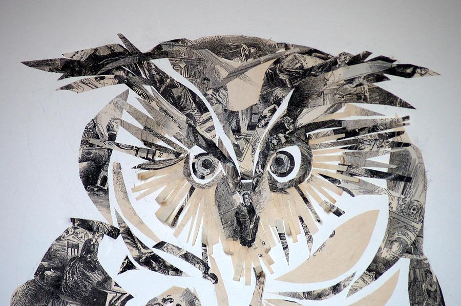 owl by Jolly Van der Velden