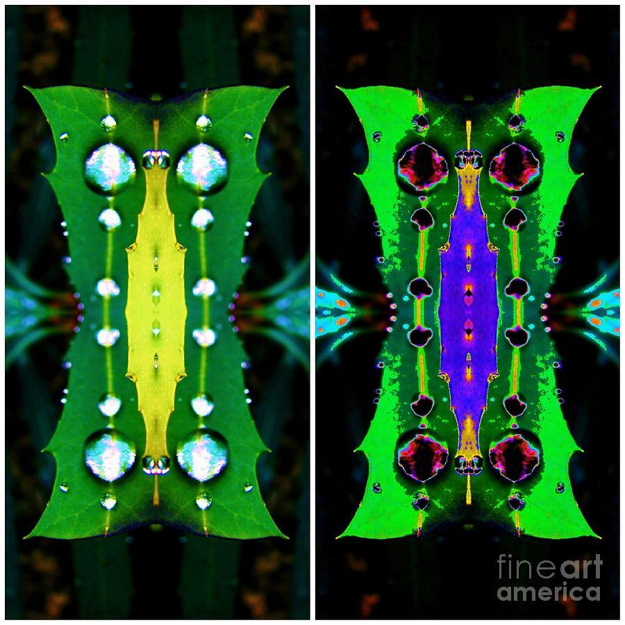 Owl Digital Art - Owl by Lorles Lifestyles