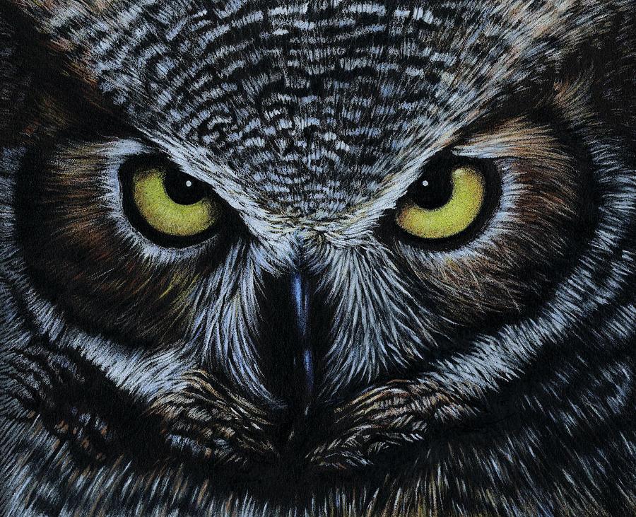 Owl Drawing By Natasha Denger