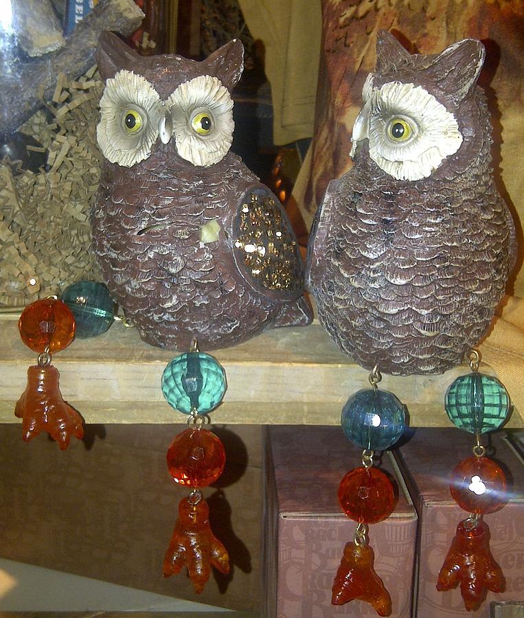 Owls Photograph by Barbara Yodice