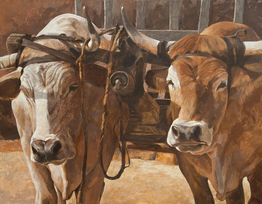 Oxen With Yoke Painting By Anke Classen