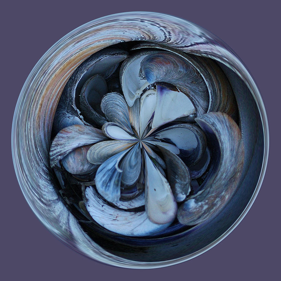 Oyster Photograph - Oyster Shell Orb by Paulette Thomas