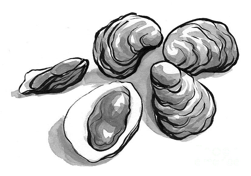 Oysters Painting - Oysters by Laura Gilmore