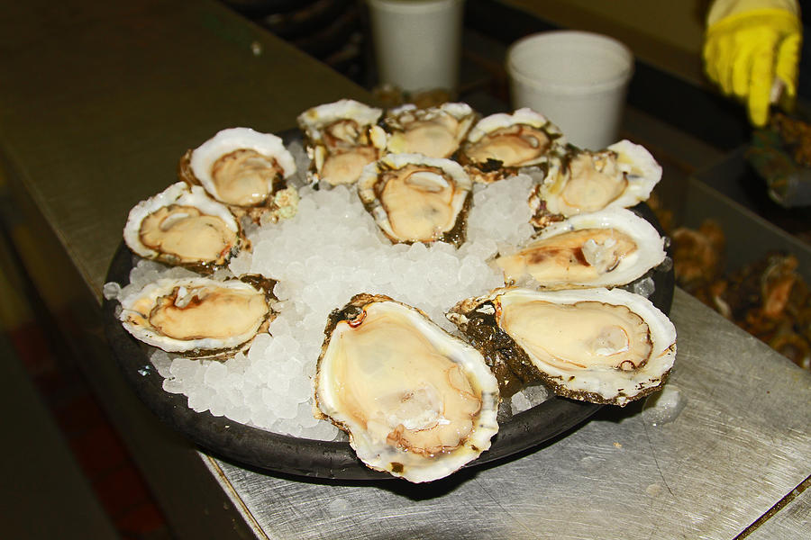 Oysters On The Half Shell Photograph by Ronald Olivier