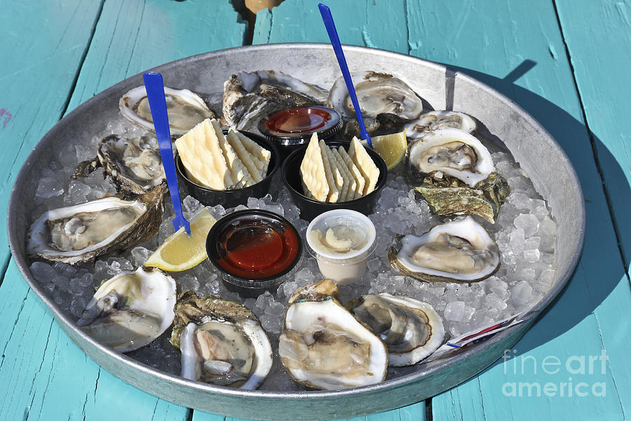 Oyster Photograph - Oysters by Sophie Vigneault