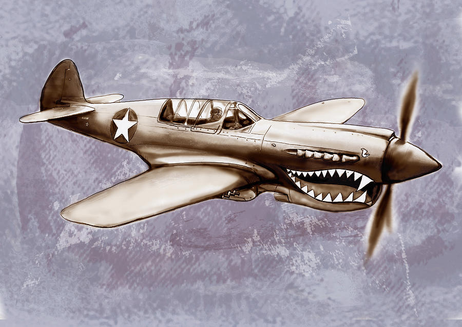 P 40 N Warhawk Airplane In World War 2 Stylised Modern Drawing