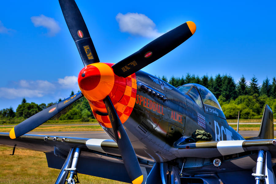 P-51 Photograph - P-51 Mustang - Speedball Alice by David Patterson