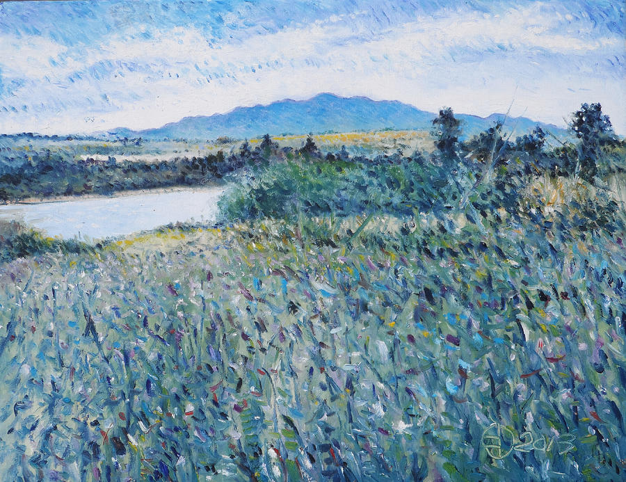 Impressionism Painting - Paardeberg Diemersfontein Western Cape South Africa by Enver Larney