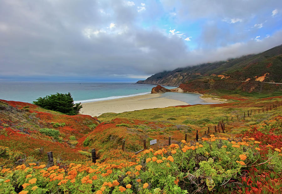 Pacific Coast Highway And Little Sur Photograph by David Toussaint