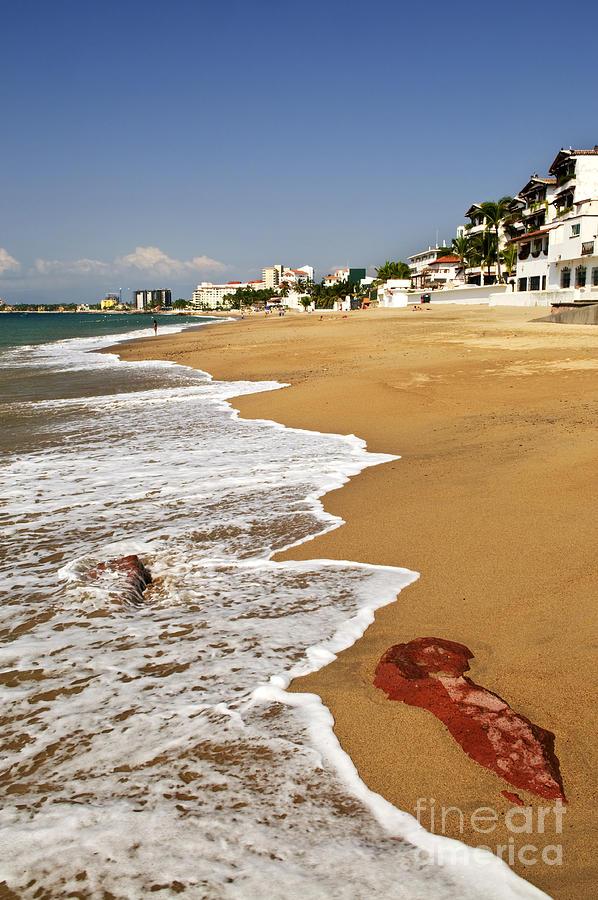 Mexico Photograph - Pacific Coast Of Mexico by Elena Elisseeva