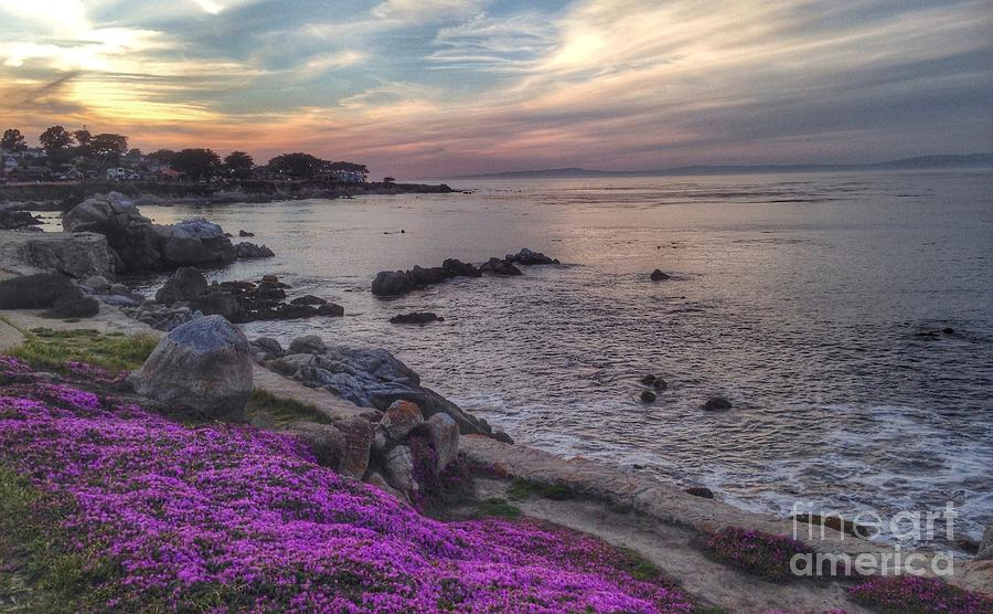 Sunset In Pacific Grove Photograph