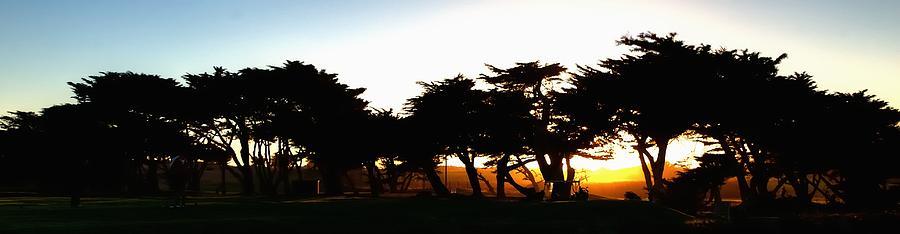 Pacific Grove Golf Links 19902 Photograph