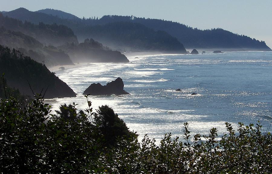 Coast Of Oregon Photograph - Pacific Mist by Karen Wiles