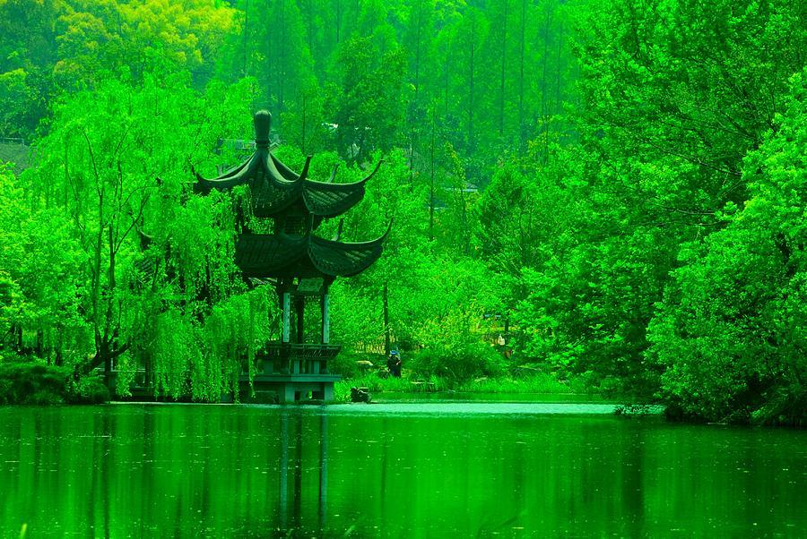 Pagoda Photograph - Pagoda On West Lake by Larry Moloney