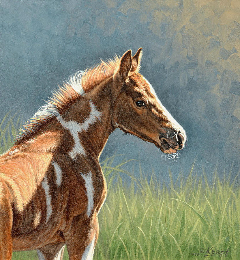 Colt Painting - Paint Filly by Paul Krapf