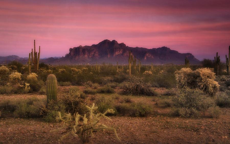Sunset Photograph - Paint It Pink Sunset  by Saija  Lehtonen