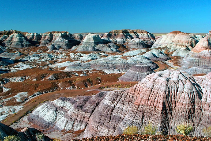 Painted Desert Photograph - Painted Desert Arizona by Al Blount