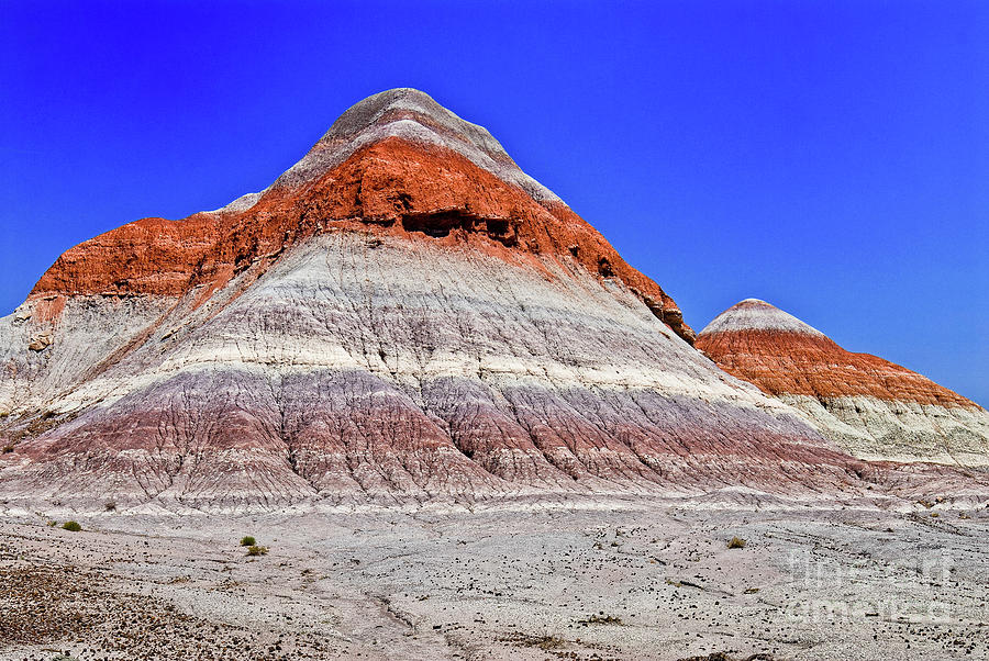 Beautiful Photograph - Painted Desert National Park by Bob and Nadine Johnston