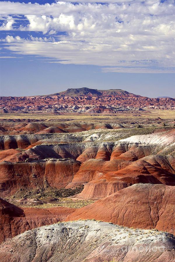 Portrait Photograph - Painted Desert Portrait by Douglas Taylor