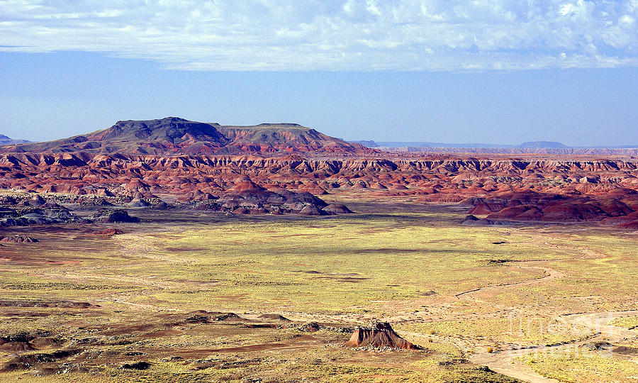Painted Desert Vista Photograph - Painted Desert Vista by Douglas Taylor