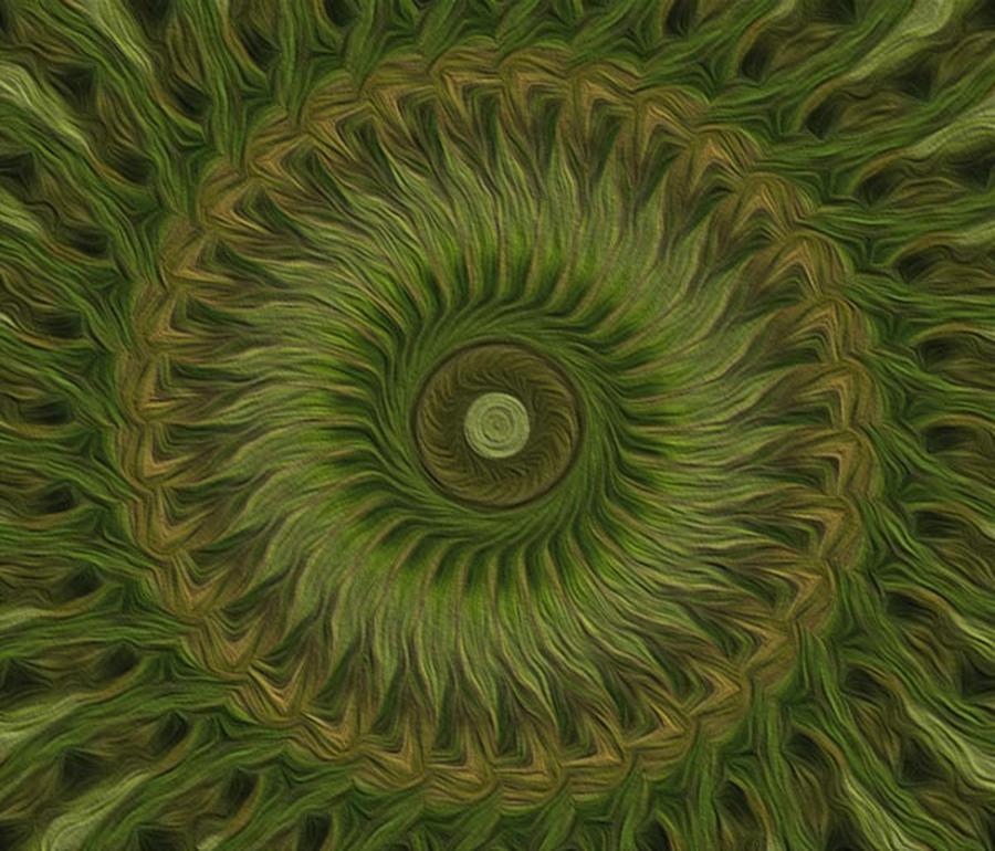 Kaleidoscope Digital Art - Painted Kaleidoscope 10 by Rhonda Barrett