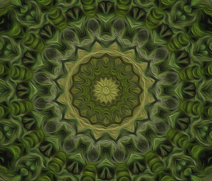 Kaleidoscope Digital Art - Painted Kaleidoscope 11 by Rhonda Barrett