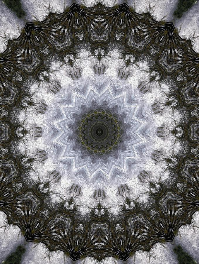 Painted Digital Art - Painted Kaleidoscope 16 by Rhonda Barrett