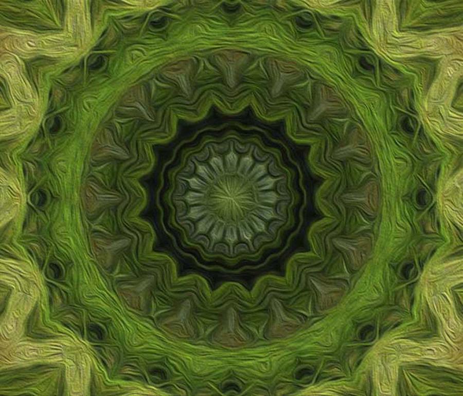 Kaleidoscope Digital Art - Painted Kaleidoscope 8 by Rhonda Barrett