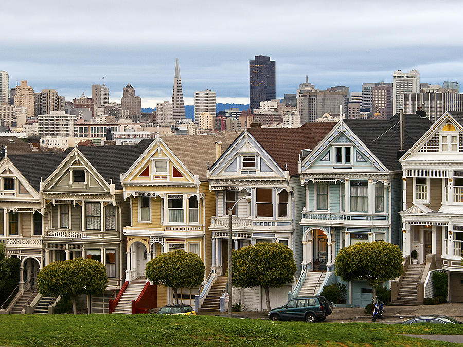 Painted Ladies Photograph - Painted Ladies by Alison Miles