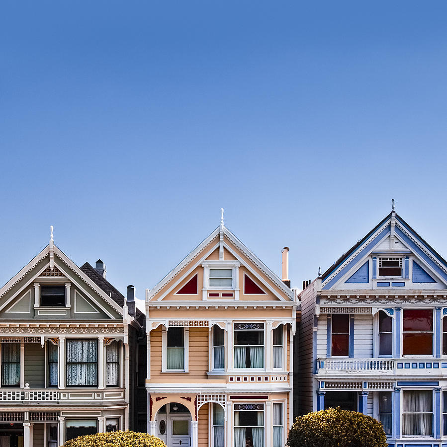 Painted Ladies Photograph - Painted Ladies by Dave Bowman