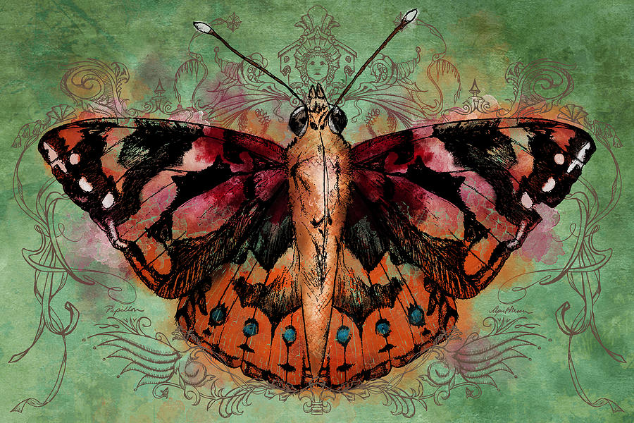 Painted Lady by April Moen