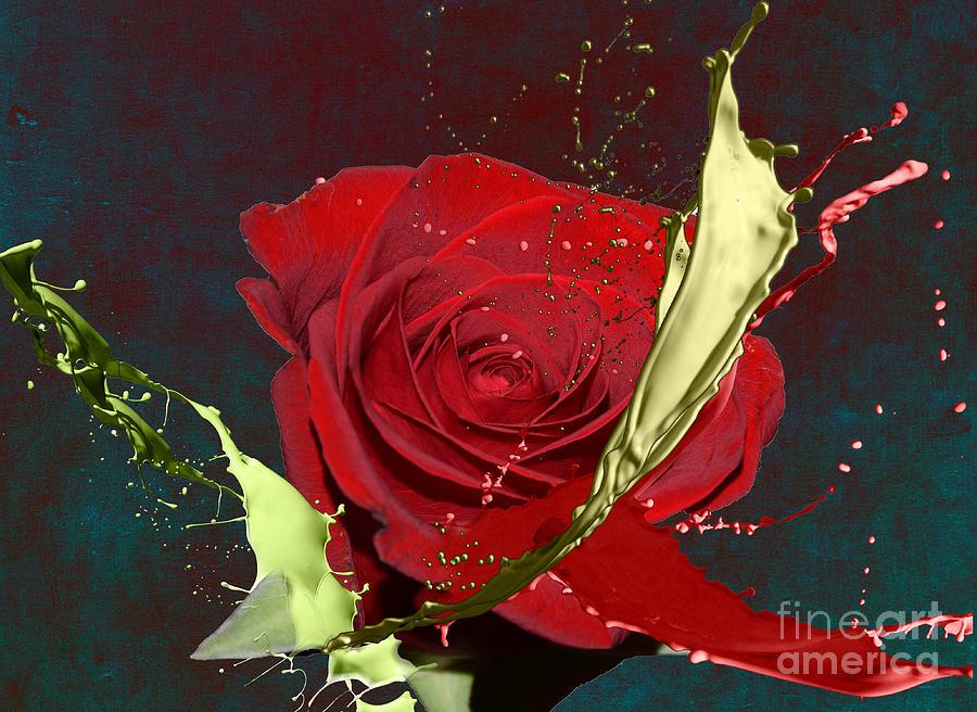 Red Rose Digital Art - Painted Rose by M Montoya Alicea