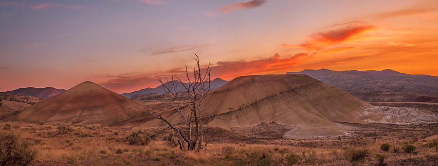 Painted Hills Photograph - Painted Sunset by Ryan Manuel