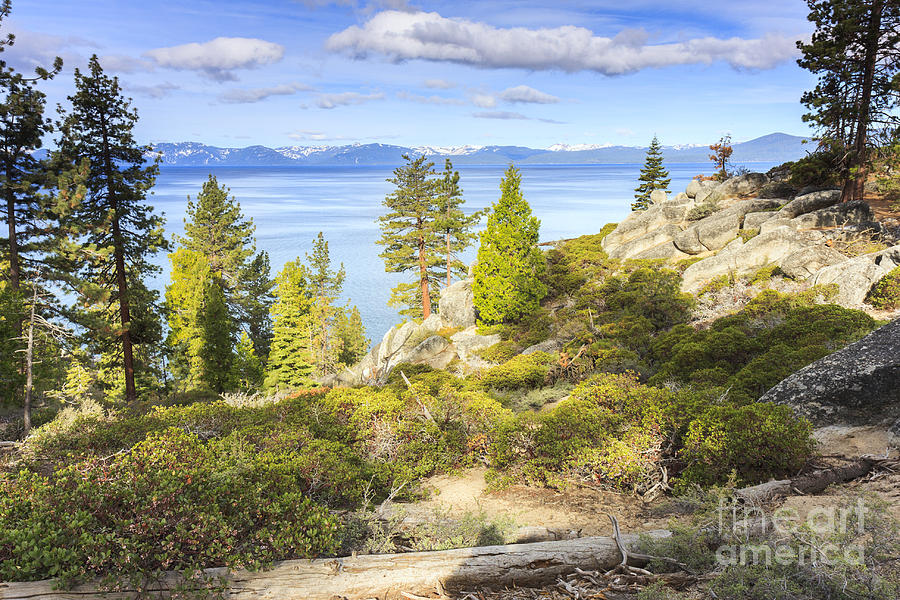 Painterly east shore of Lake Tahoe by Ken Brown