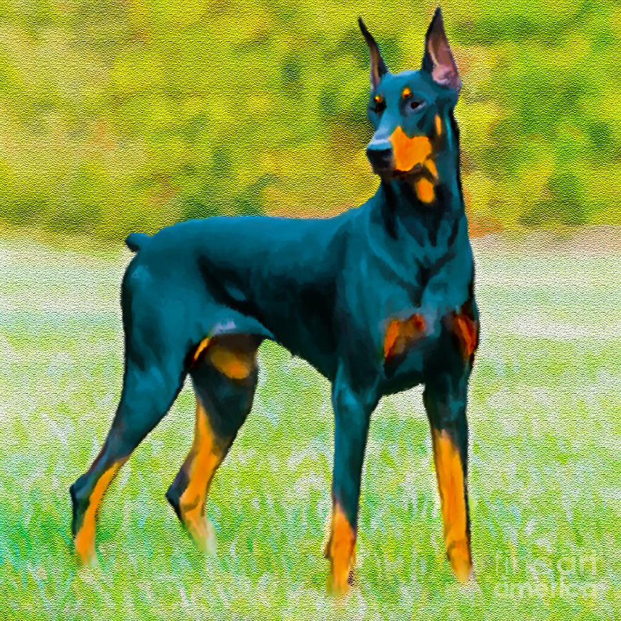 Doberman Painting - Painting Doberman Pincher by Bob and Nadine Johnston