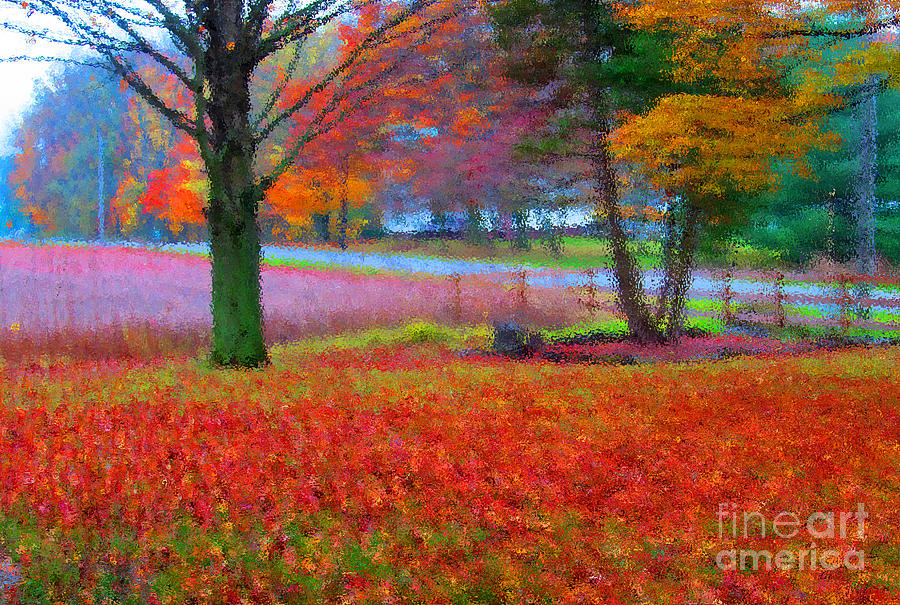 Autumn Photograph - Painting Like Frontyard In Autumn by Tina M Wenger