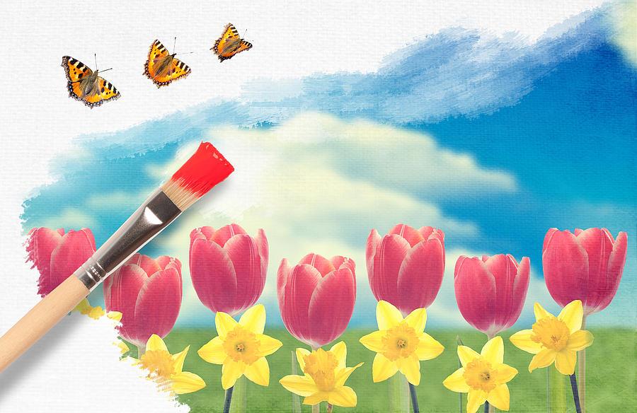 Daffodils Photograph - Painting Tulips by Amanda Elwell