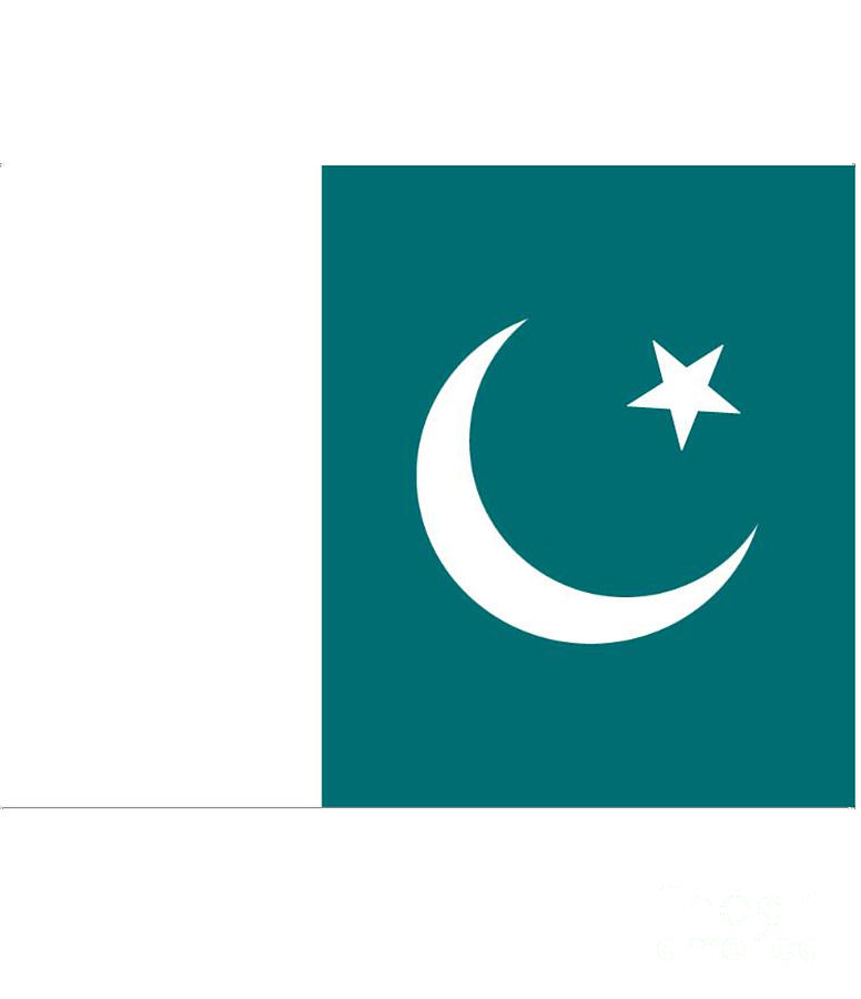 Pakistan Digital Art - Pakistan Flag by Frederick Holiday