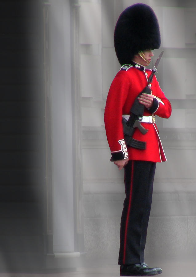 London Photograph - Palace Guard by William Howard