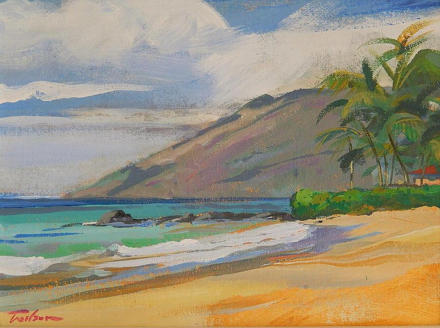 Beach Painting - Palauea Beach by Ron Wilson