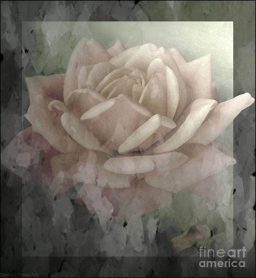 Nature Photograph - Pale Rose Photoart by Debbie Portwood