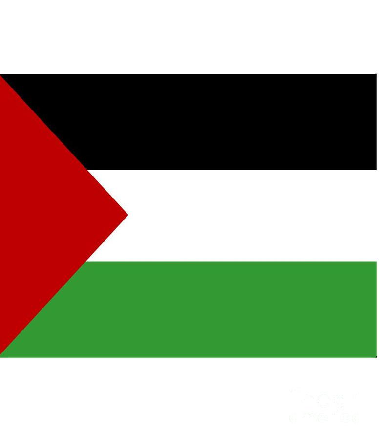 Palestine Digital Art - Palestine Flag by Frederick Holiday