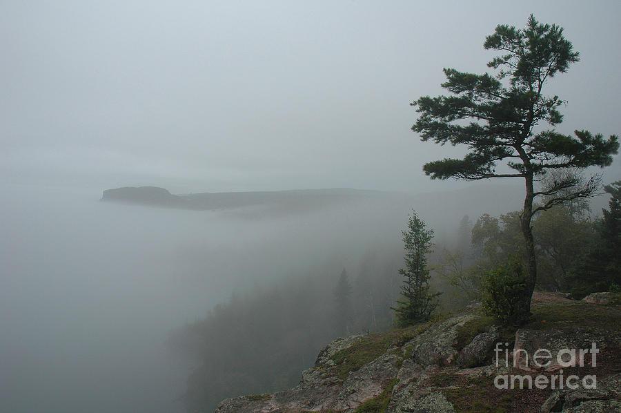 Palisade Photograph - Palisade in the Mist by Joan Wallner