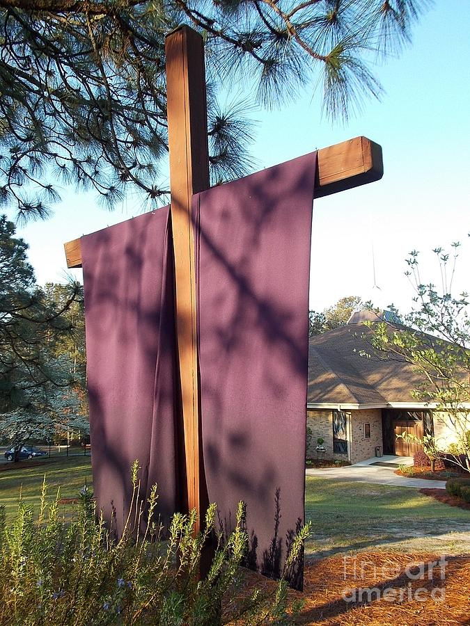 Lent Photograph - Palm Sunday  I Believe by Matthew Seufer