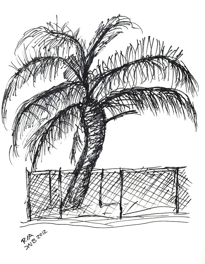 Chain Link Fence Drawing palm tree with chain link fence drawingj nell bliss