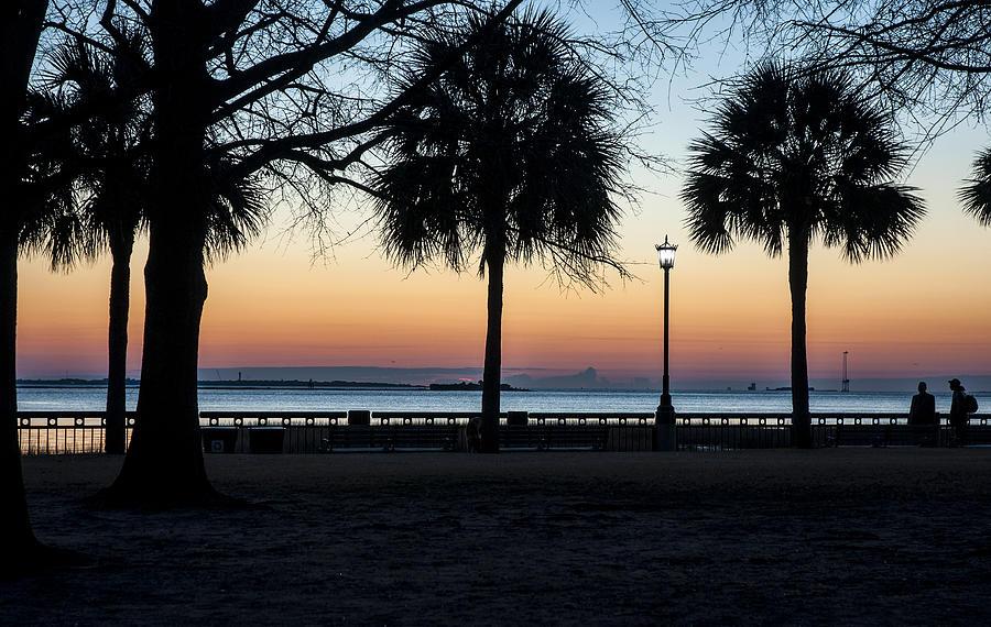 Palms Over Sunrise Photograph