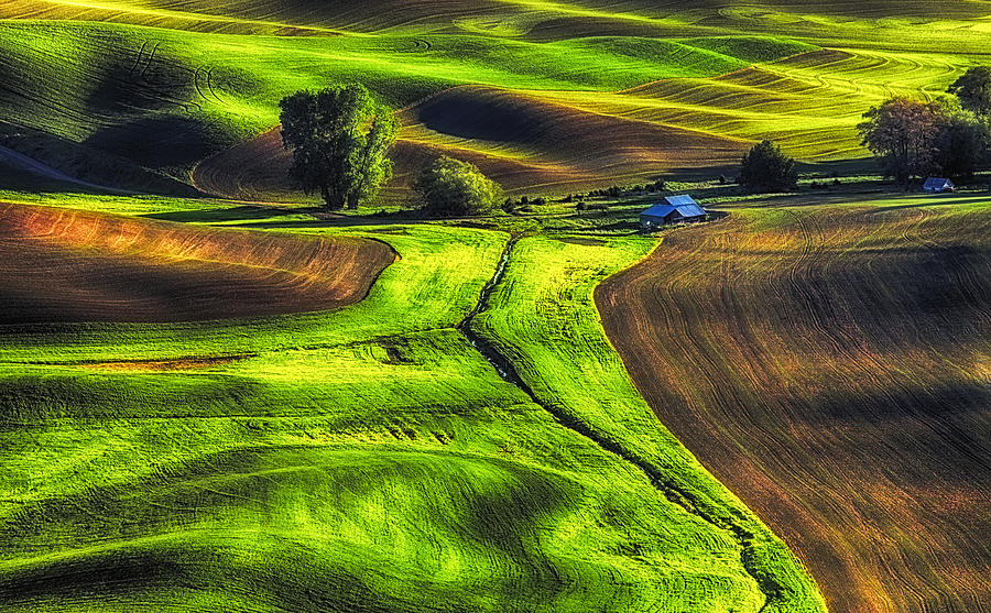 Landscape Photograph - Palouse Glow by Ray Still