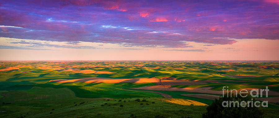 Agricultural Photograph - Palouse Land And Sky by Inge Johnsson