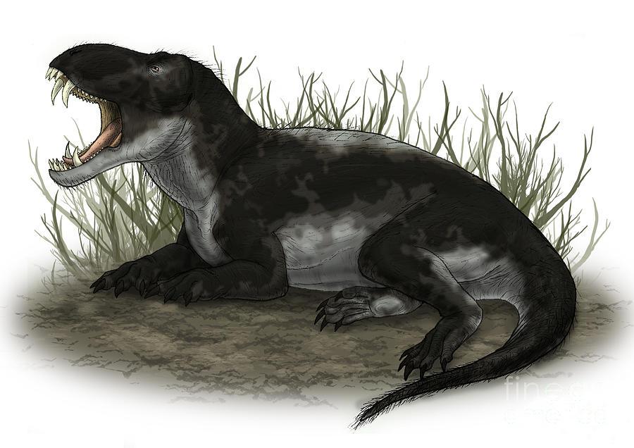 Pampaphoneus, A Genus Of Dinocephalian Digital Art