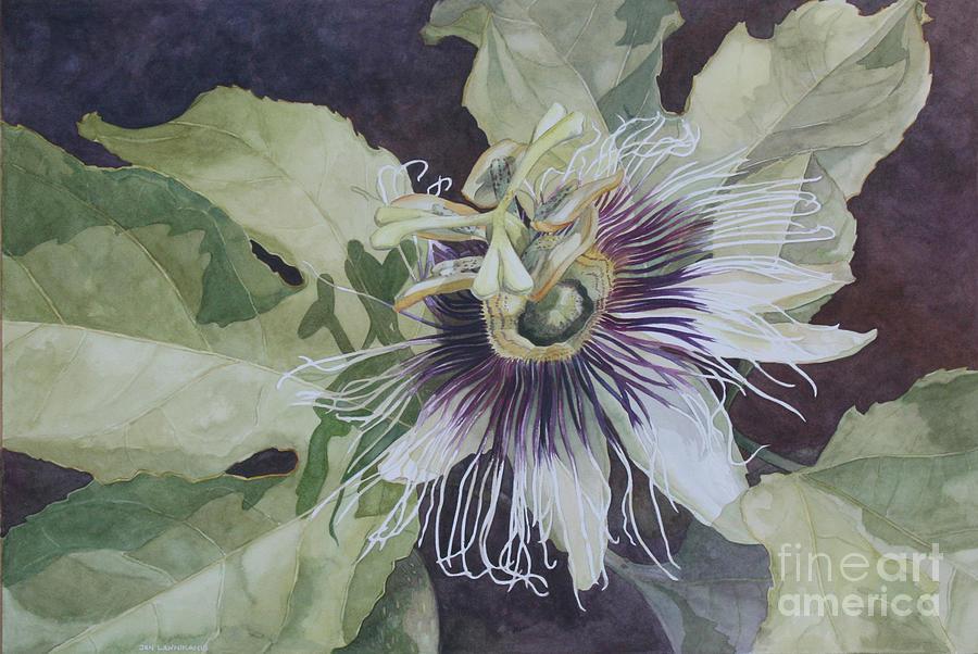Flower Painting - Panama Passion by Jan Lawnikanis